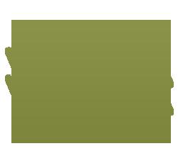 icon_dollar